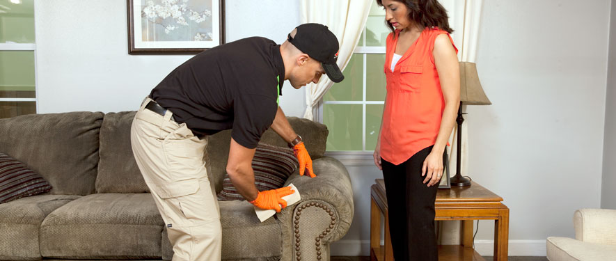 Martinsville, VA carpet upholstery cleaning